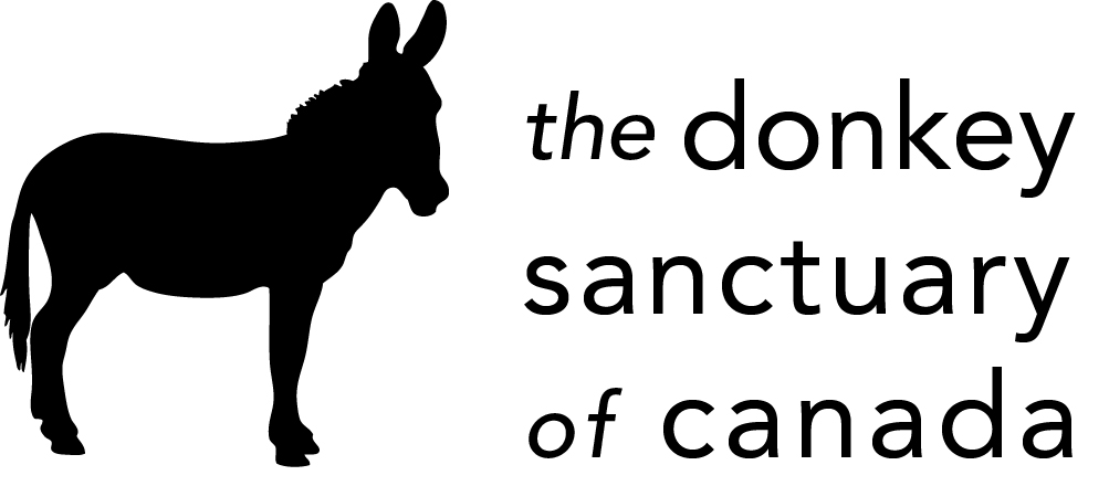 Monthly :: Donkey Sanctuary of Canada